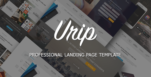 Urip Professional Landing Page